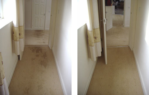 Hallway Carpet Before and After